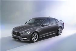 Introducing The All New Jaguar XF