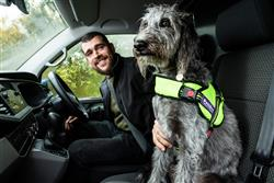 CARE NEEDED IF YOU DRIVE WITH YOUR DOG