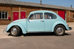 classic cars - the volkswagen beetle