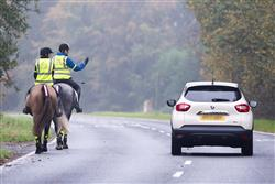 passing a horse safely